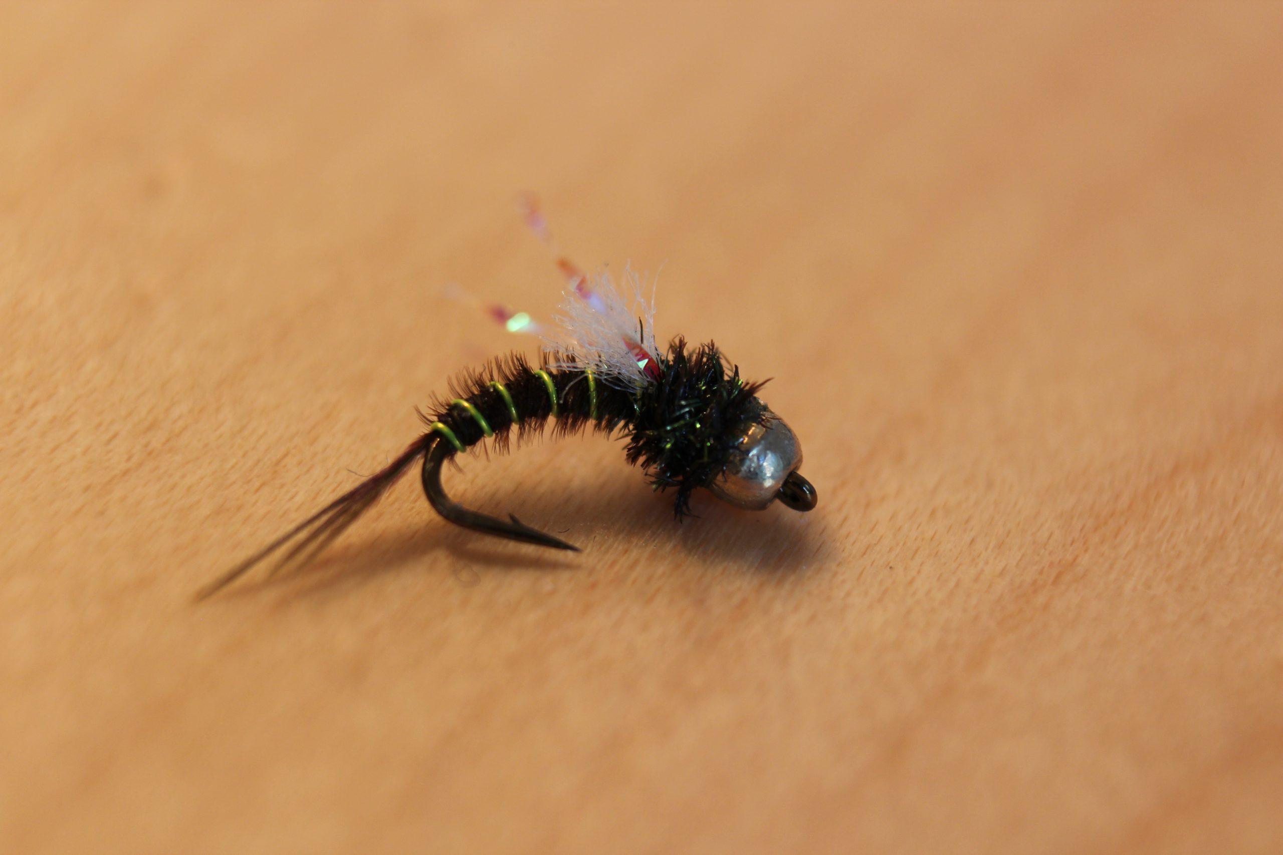 HCs gullhodenymfe nymfe flue
